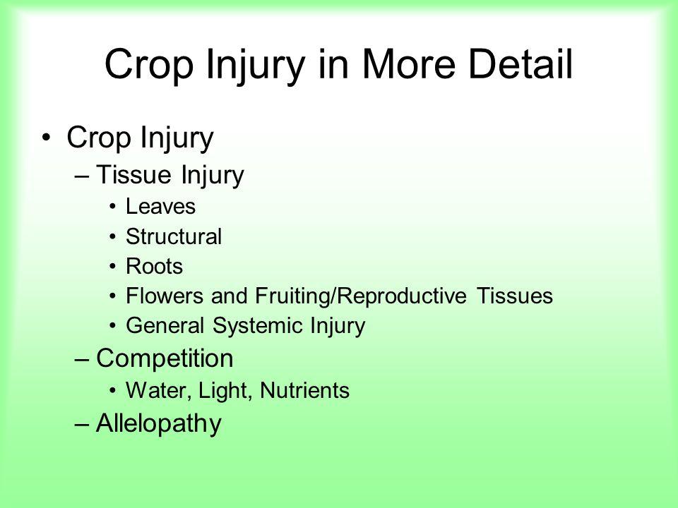 Crop Injury in More Detail