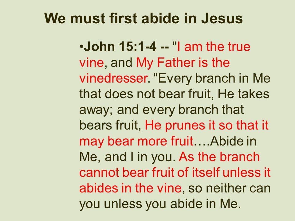 We must first abide in Jesus