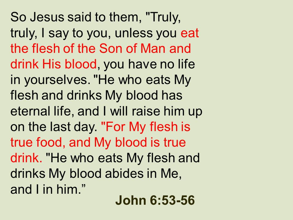 So Jesus said to them, Truly, truly, I say to you, unless you eat the flesh of the Son of Man and drink His blood, you have no life in yourselves. He who eats My flesh and drinks My blood has eternal life, and I will raise him up on the last day. For My flesh is true food, and My blood is true drink. He who eats My flesh and drinks My blood abides in Me, and I in him.