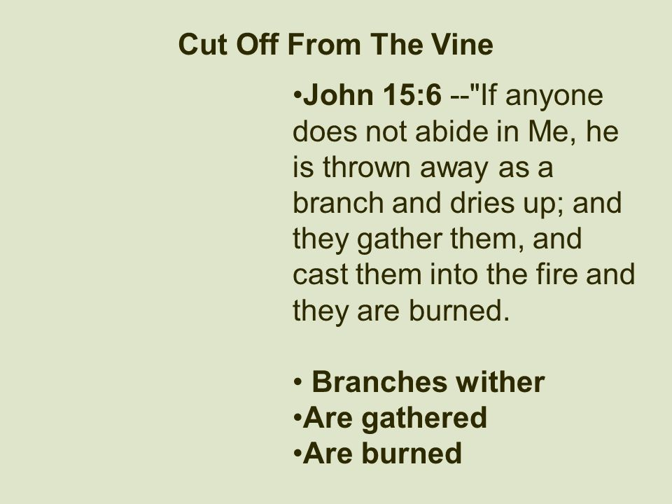 Cut Off From The Vine