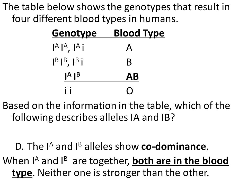 The table below shows the genotypes that result in four different blood types in humans.