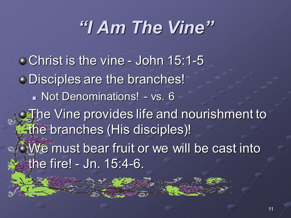 I Am The Vine Christ is the vine - John 15:1-5