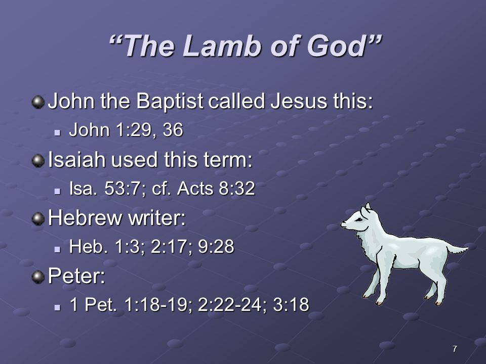 The Lamb of God John the Baptist called Jesus this: