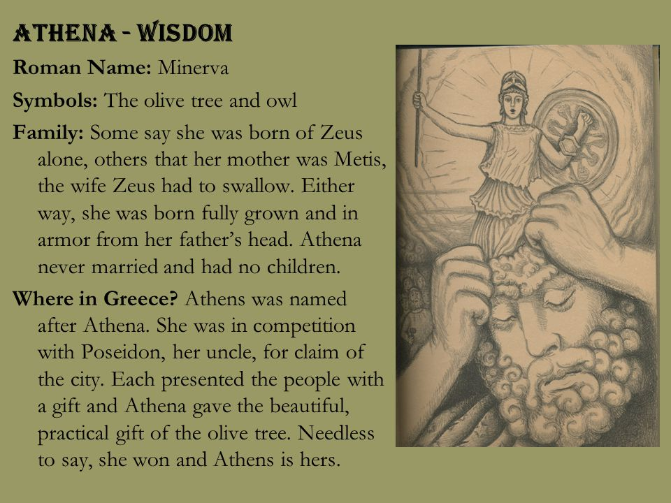 Athena - Wisdom Roman Name: Minerva Symbols: The olive tree and owl