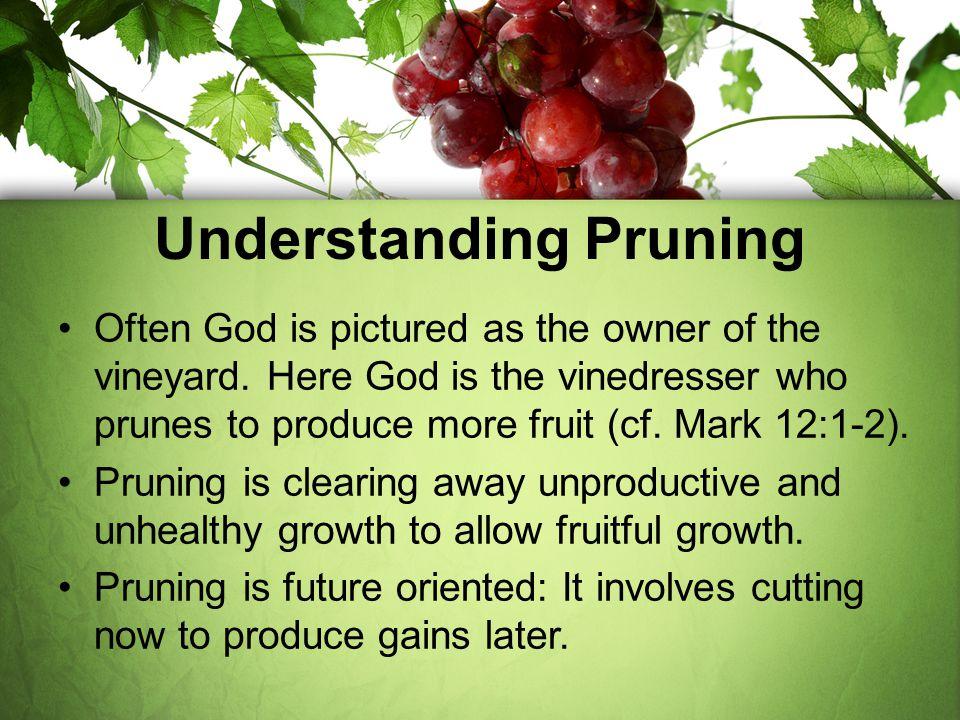 Understanding Pruning