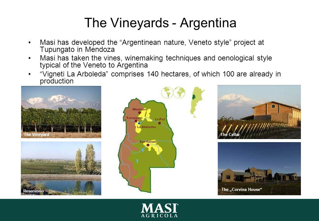 The Vineyards - Argentina