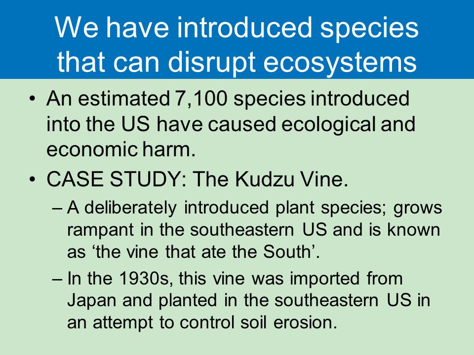 We have introduced species that can disrupt ecosystems