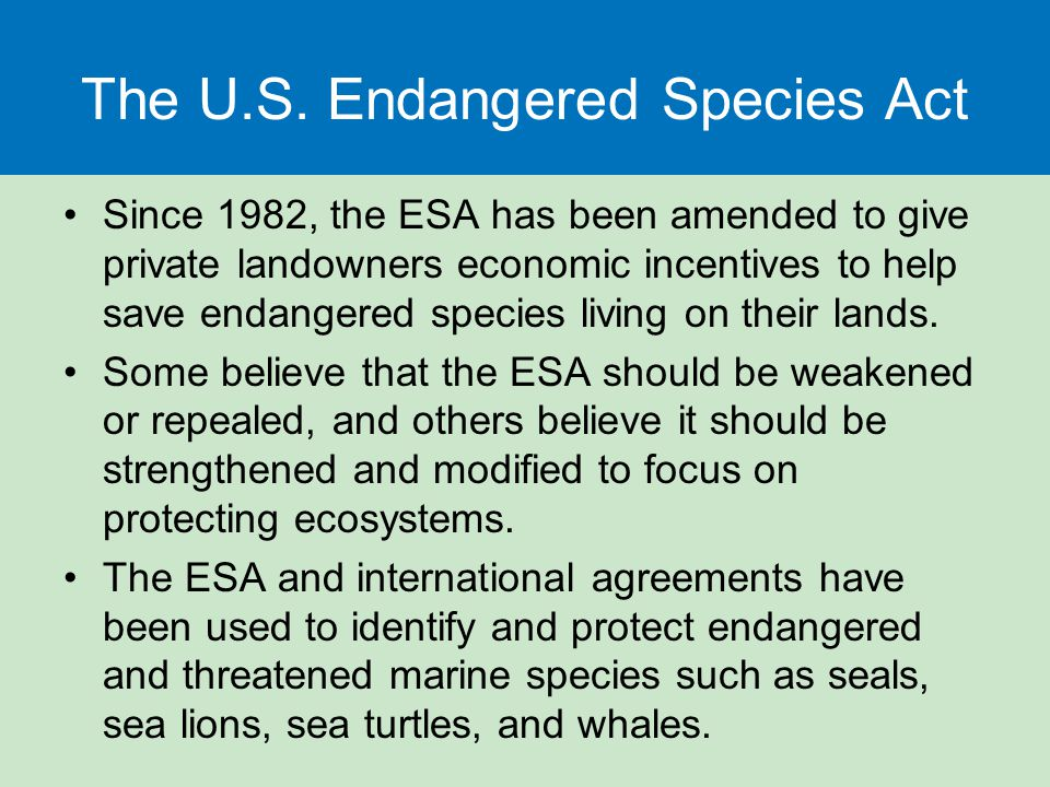 The U.S. Endangered Species Act