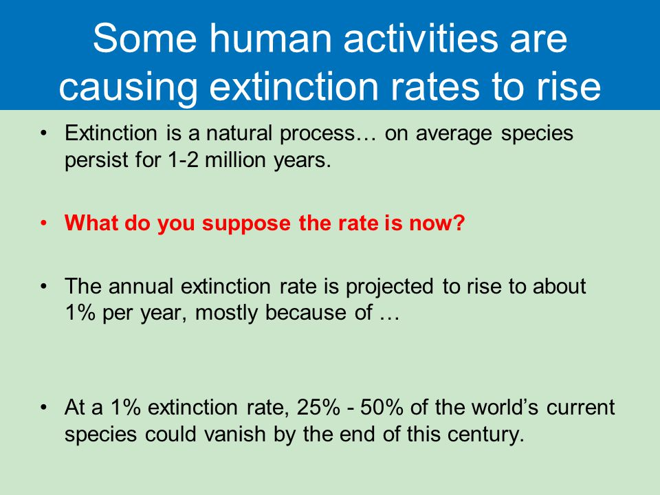Some human activities are causing extinction rates to rise