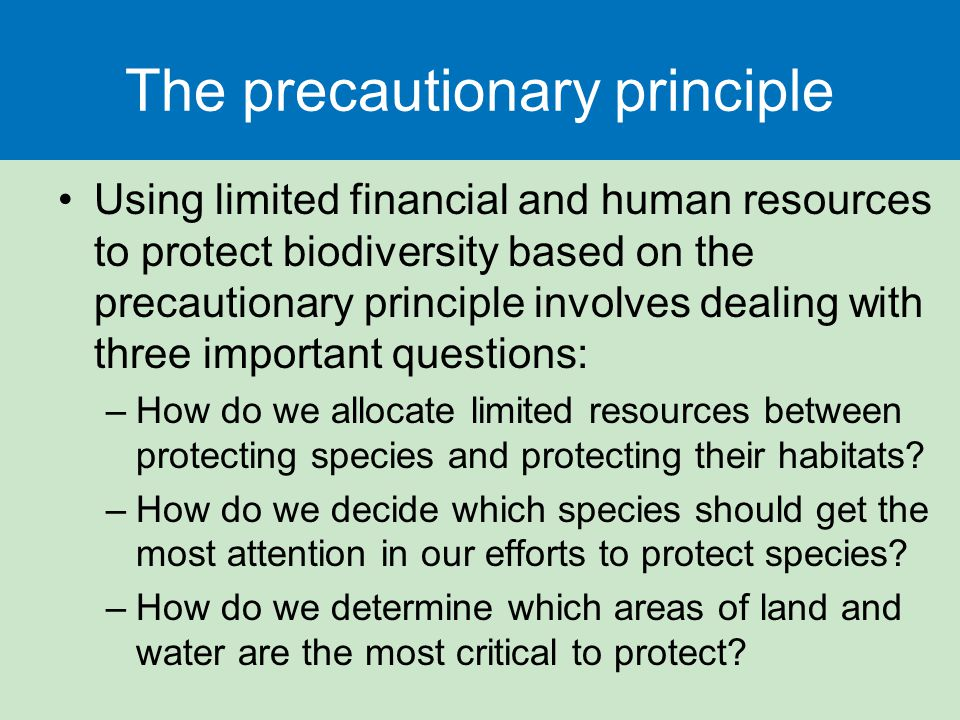 The precautionary principle