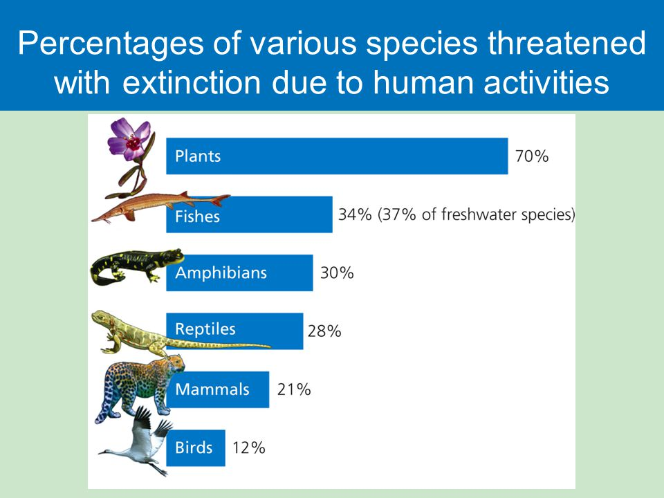 Percentages of various species threatened with extinction due to human activities