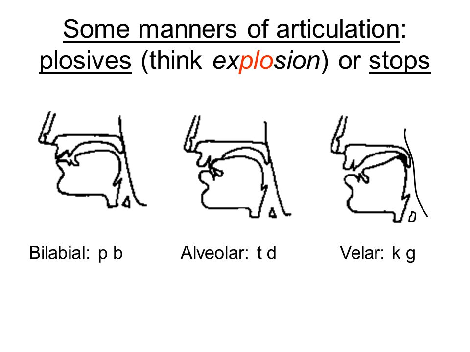 Some manners of articulation: plosives (think explosion) or stops