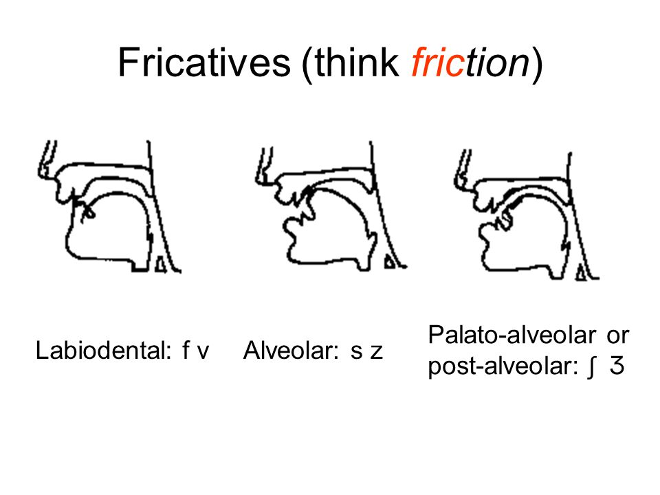 Fricatives (think friction)