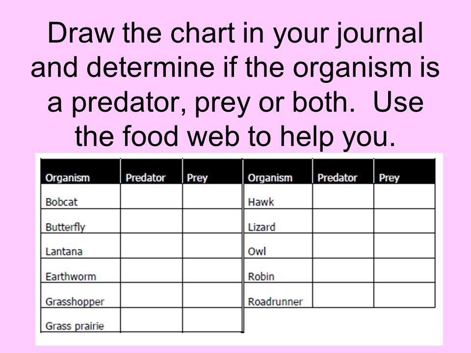 Draw the chart in your journal and determine if the organism is a predator, prey or both.