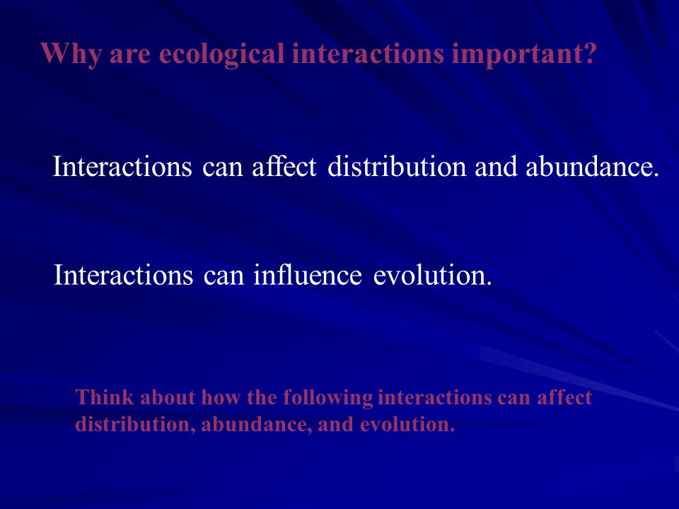 Why are ecological interactions important