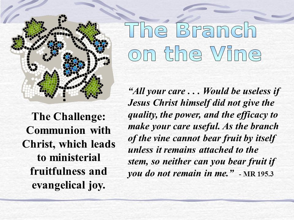 The Branch on the Vine.