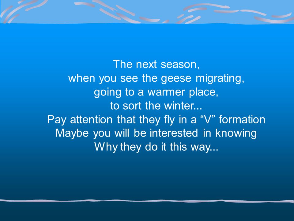 when you see the geese migrating, going to a warmer place,