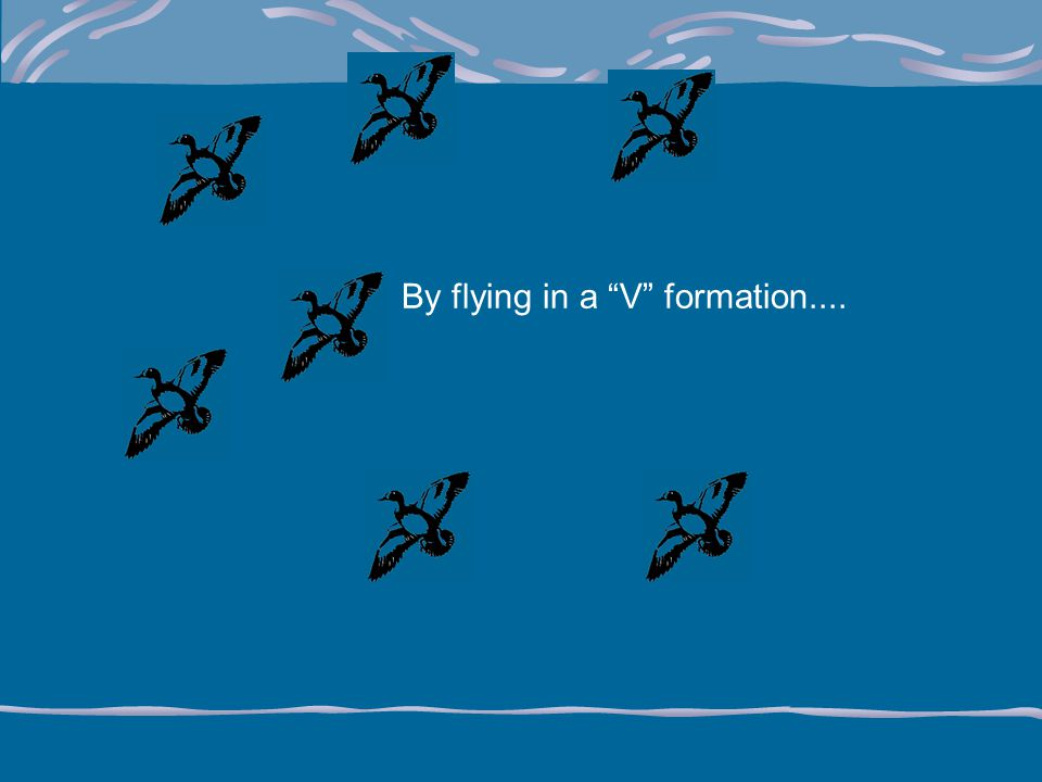 By flying in a V formation....