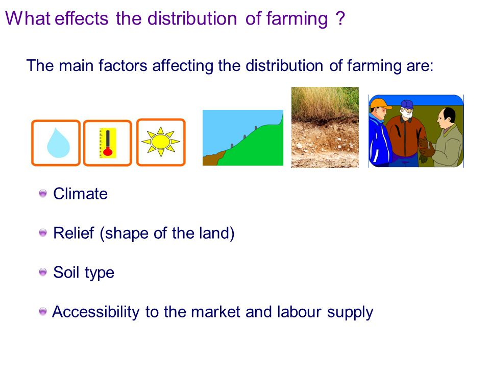 What effects the distribution of farming