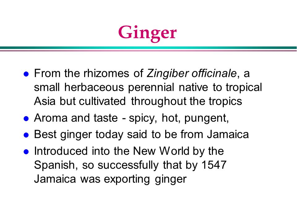 Ginger From the rhizomes of Zingiber officinale, a small herbaceous perennial native to tropical Asia but cultivated throughout the tropics.