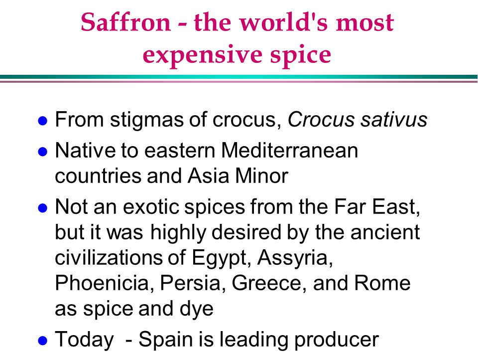 Saffron - the world s most expensive spice