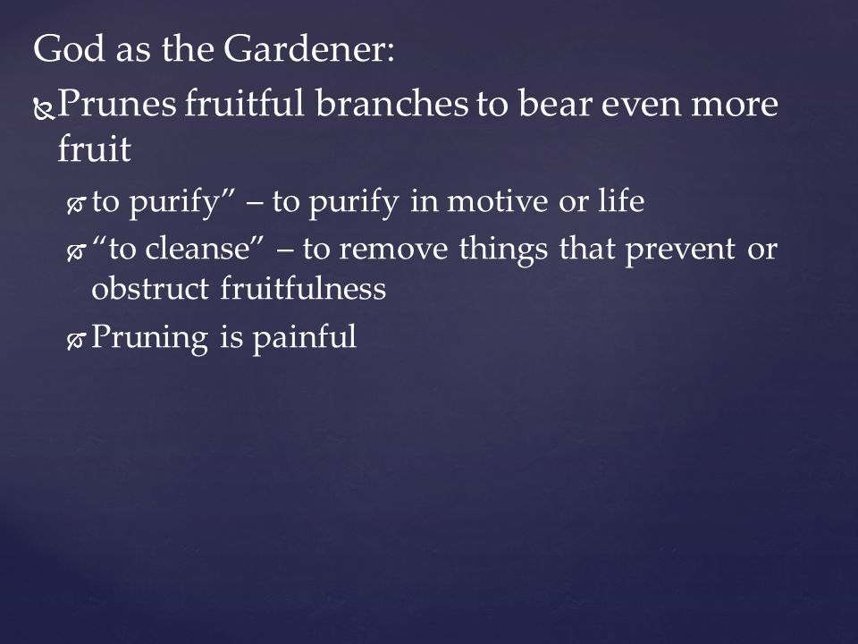 Prunes fruitful branches to bear even more fruit