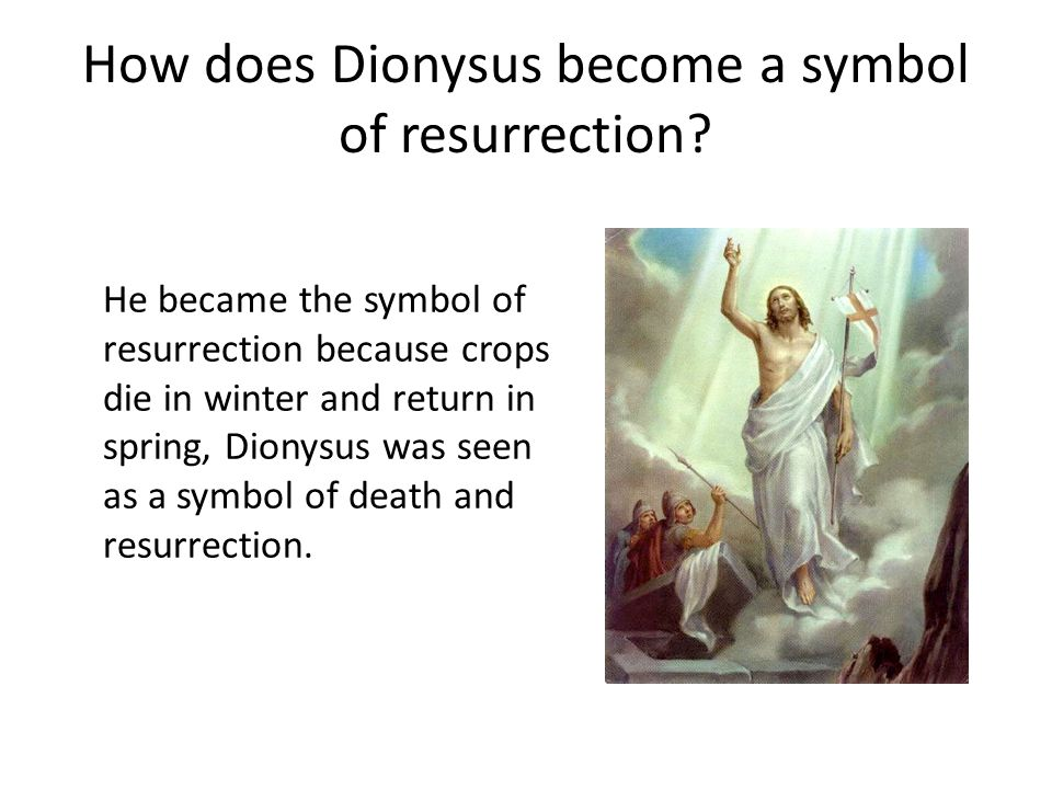 How does Dionysus become a symbol of resurrection