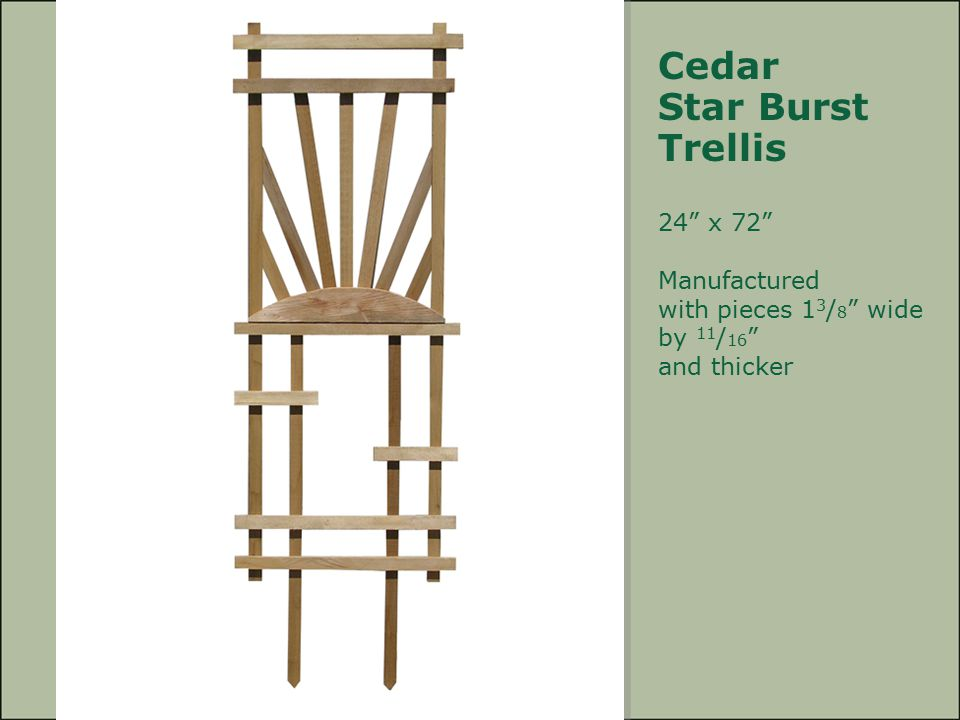 Cedar Star Burst Trellis 24 x 72