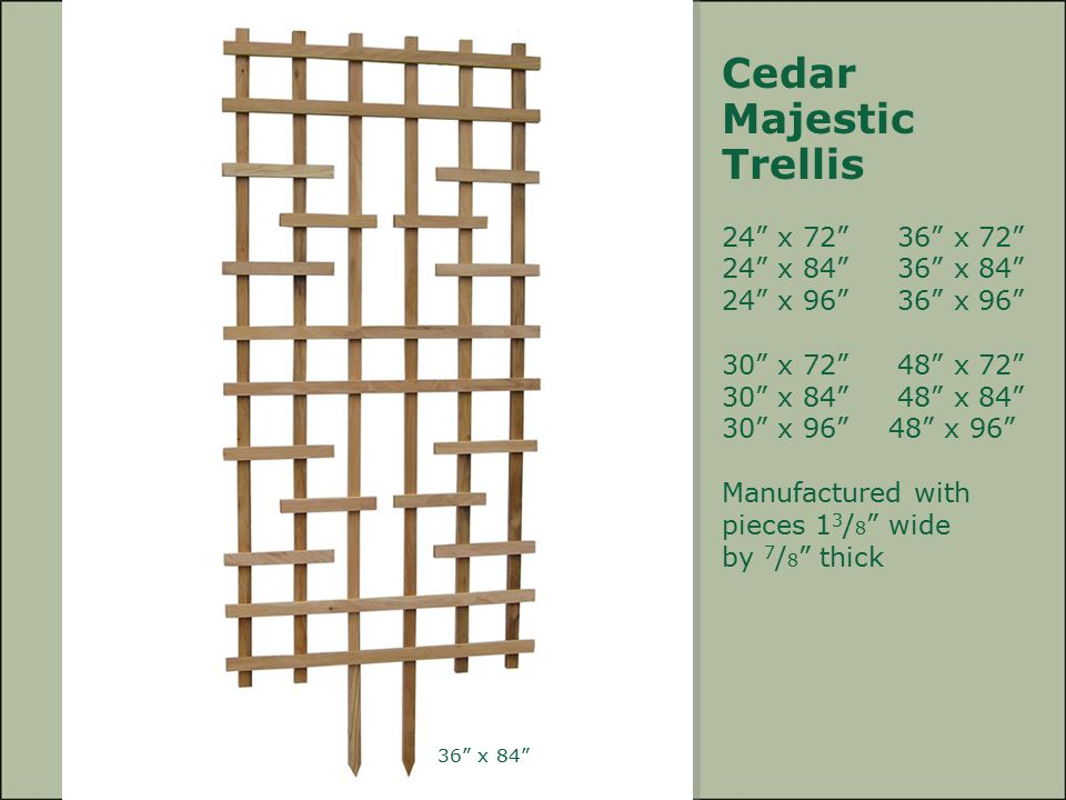 Cedar Majestic Trellis 24 x 72 36 x 72 24 x 84 36 x 84