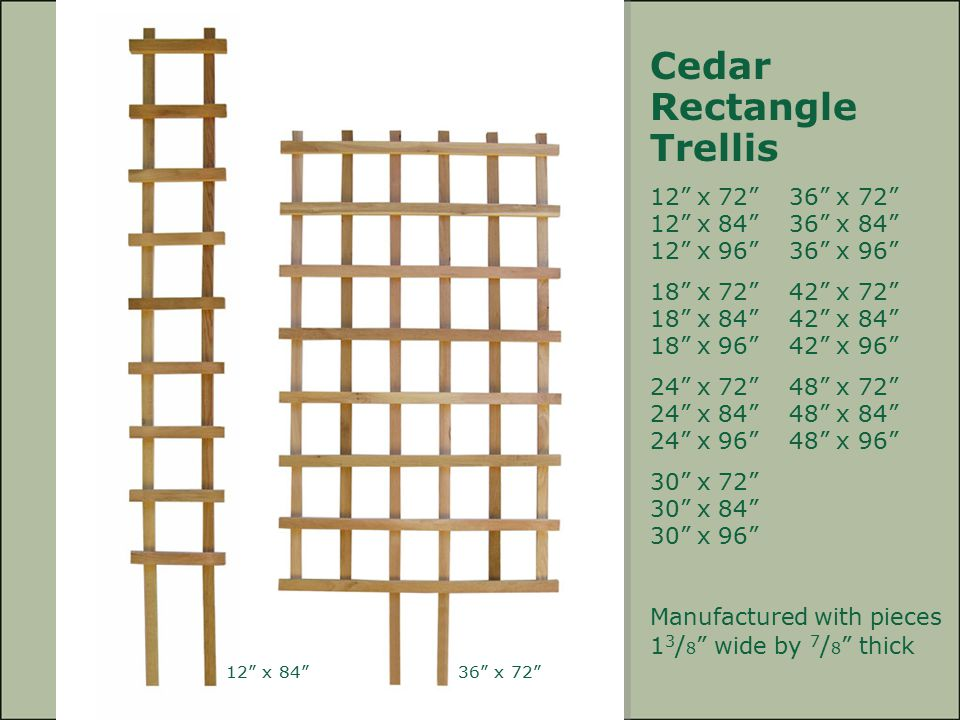 Cedar Rectangle Trellis