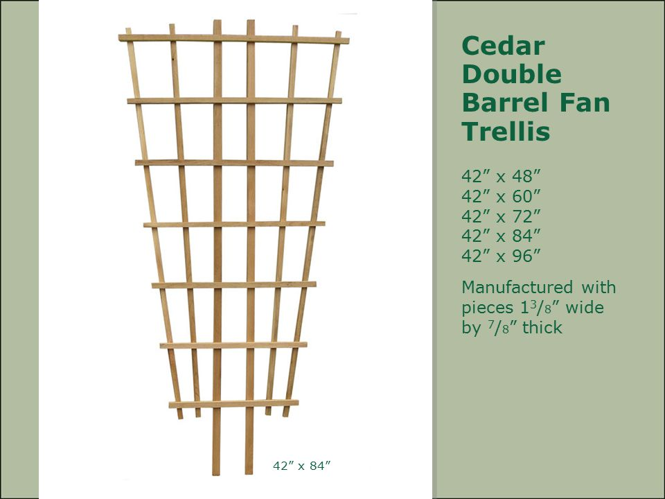 Cedar Double Barrel Fan Trellis