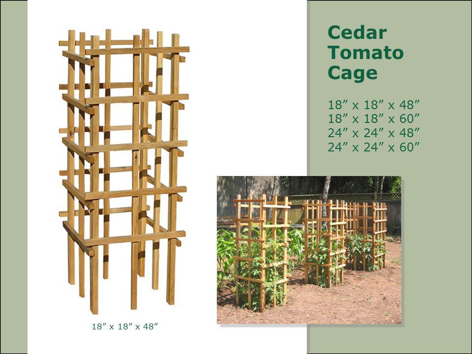 Cedar Tomato. Cage.