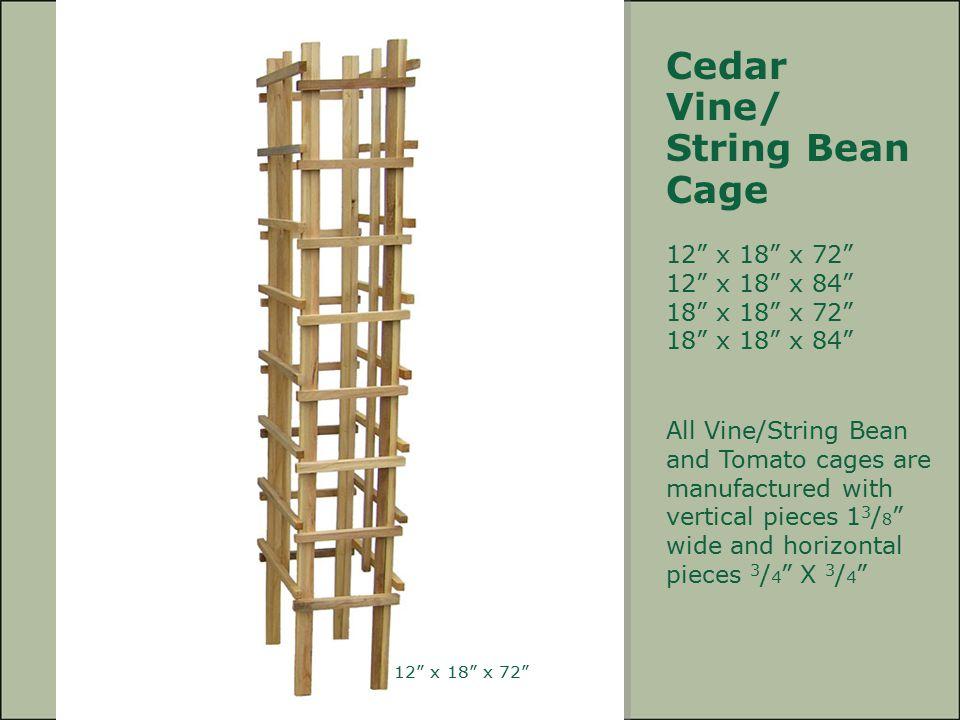 Cedar Vine/ String Bean Cage