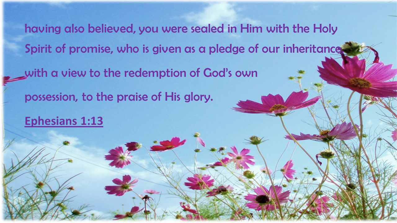 having also believed, you were sealed in Him with the Holy Spirit of promise, who is given as a pledge of our inheritance,