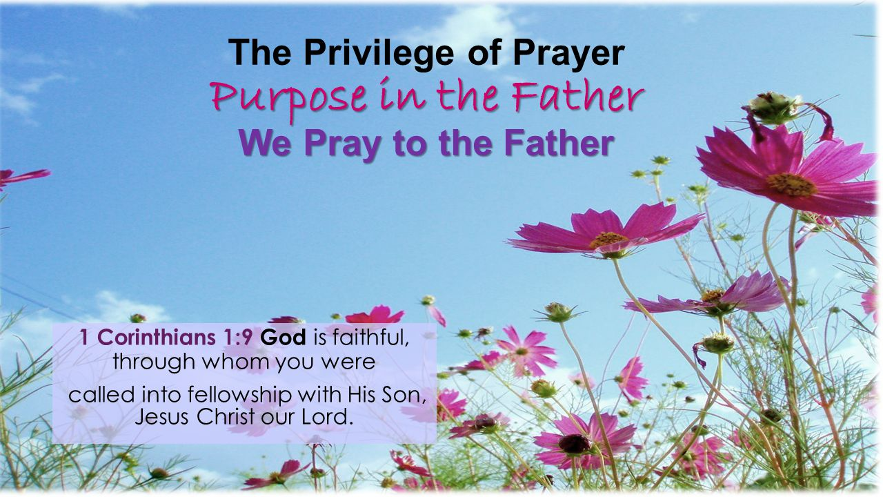 The Privilege of Prayer Purpose in the Father We Pray to the Father