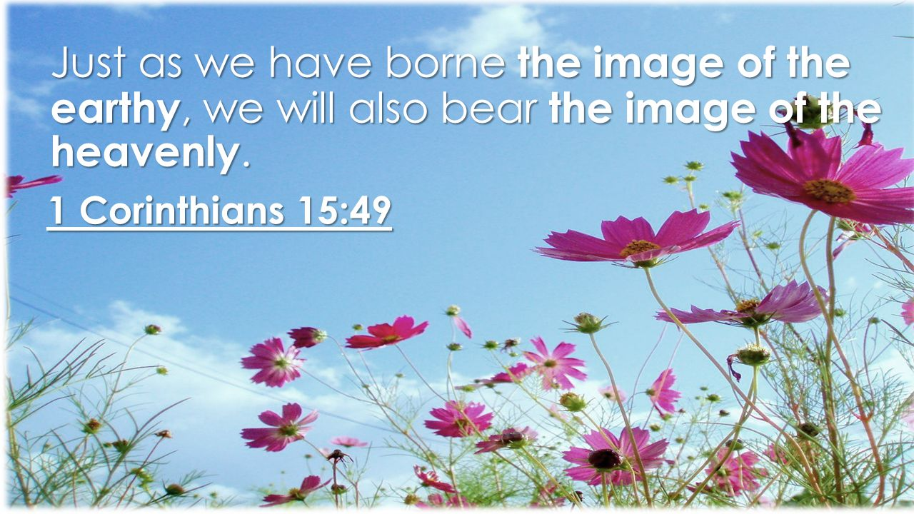 Just as we have borne the image of the earthy, we will also bear the image of the heavenly.