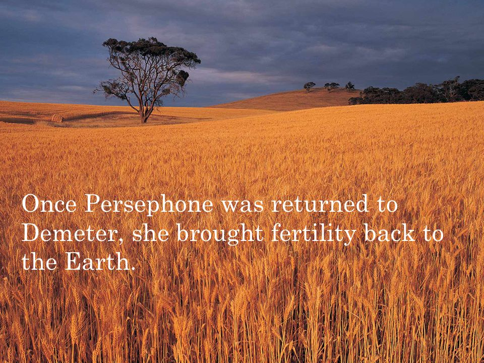 Once Persephone was returned to Demeter, she brought fertility back to the Earth.