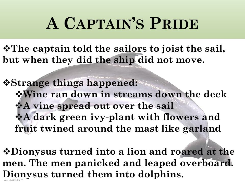 A Captain's Pride The captain told the sailors to joist the sail, but when they did the ship did not move.