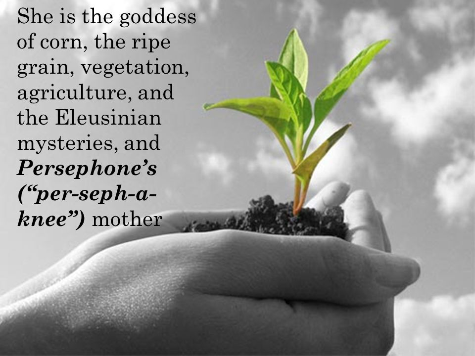 She is the goddess of corn, the ripe grain, vegetation, agriculture, and the Eleusinian mysteries, and Persephone's ( per-seph-a-knee ) mother