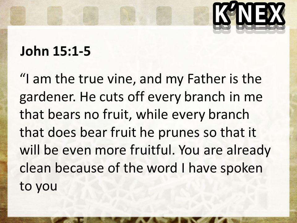 John 15:1-5