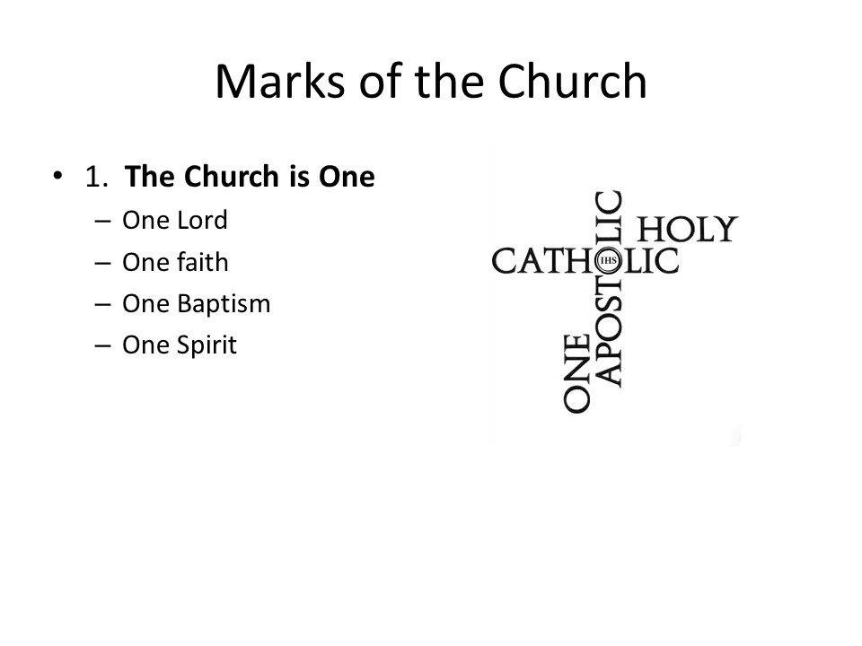 Marks of the Church 1. The Church is One One Lord One faith