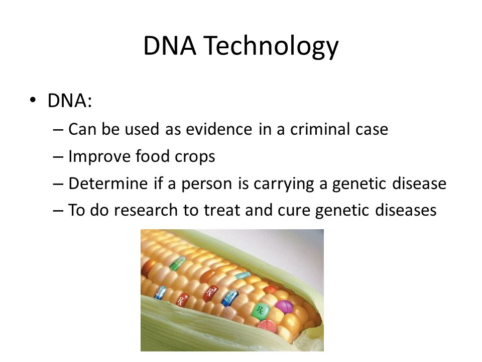 DNA Technology DNA: Can be used as evidence in a criminal case