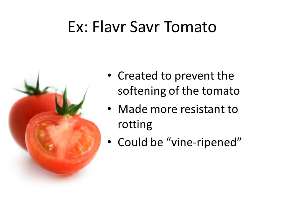 Ex: Flavr Savr Tomato Created to prevent the softening of the tomato