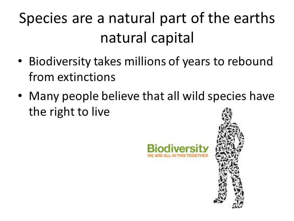 Species are a natural part of the earths natural capital