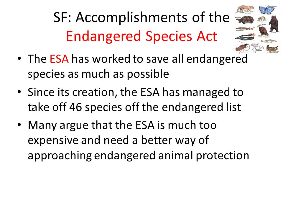 SF: Accomplishments of the Endangered Species Act