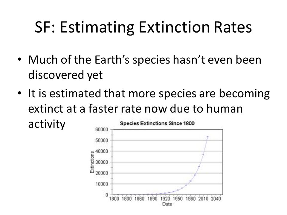 SF: Estimating Extinction Rates