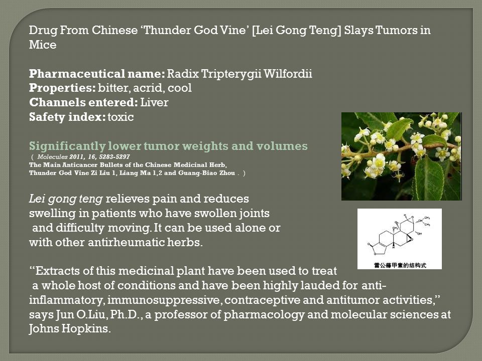 Significantly lower tumor weights and volumes