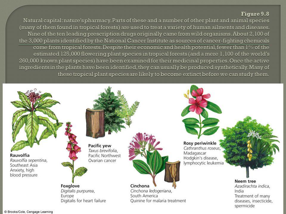 Figure 9. 8 Natural capital: nature's pharmacy