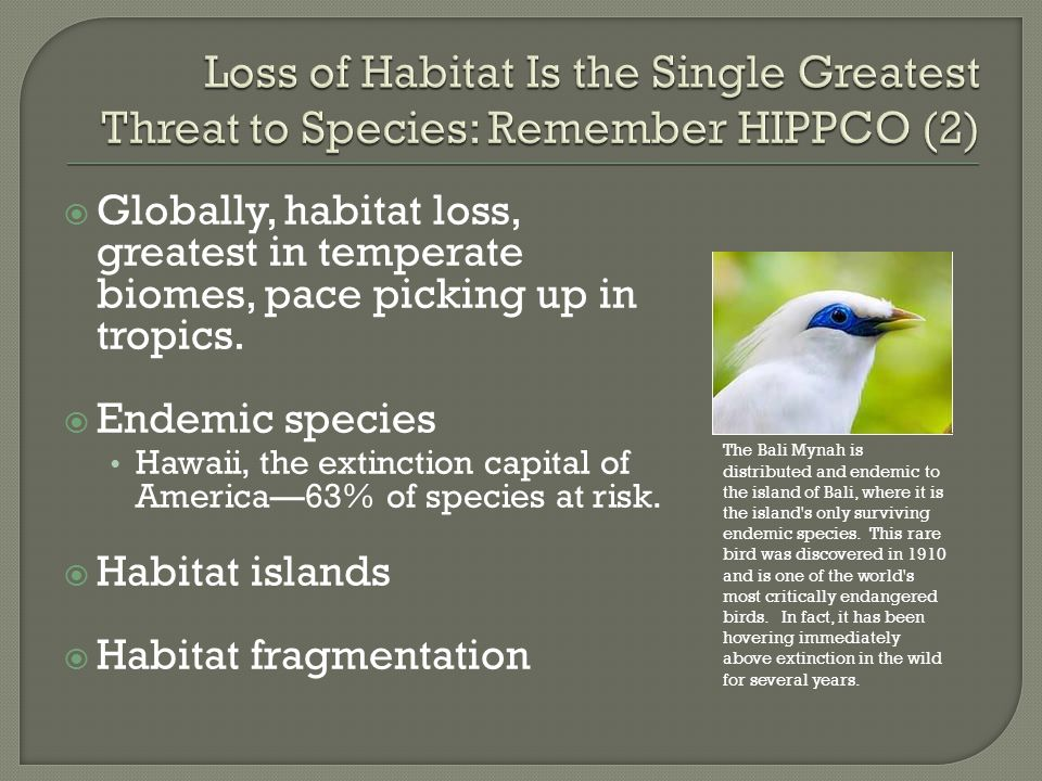 Loss of Habitat Is the Single Greatest Threat to Species: Remember HIPPCO (2)