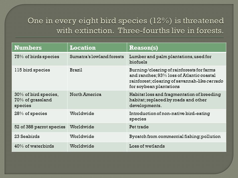 One in every eight bird species (12%) is threatened with extinction
